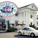 America's Florist