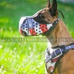 Belgian Malinois Dog Breed Store