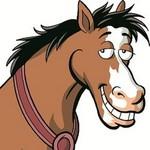 Horsesonstuff.com