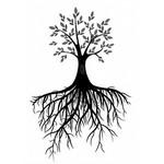 Root Naturally